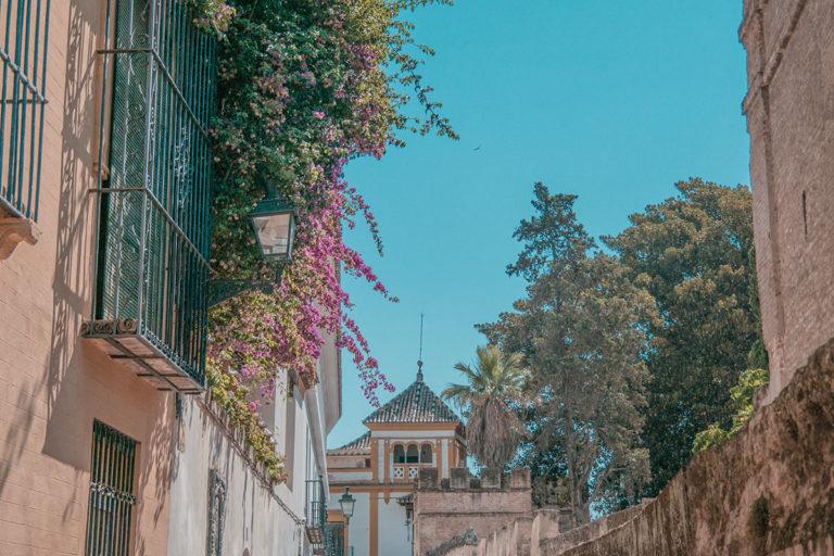 Visiter Séville