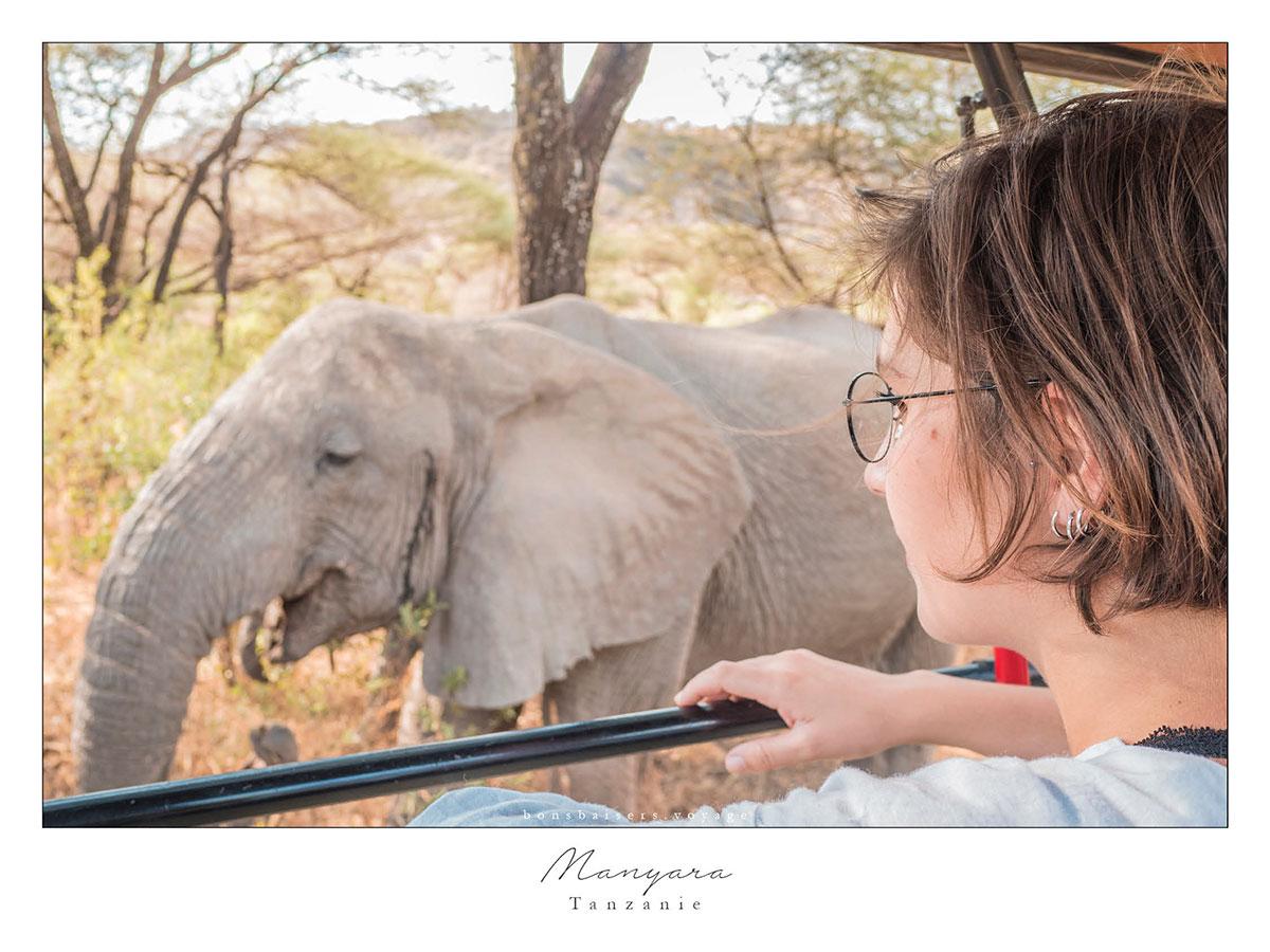 Safari en Tanzanie éléphant à Manyara